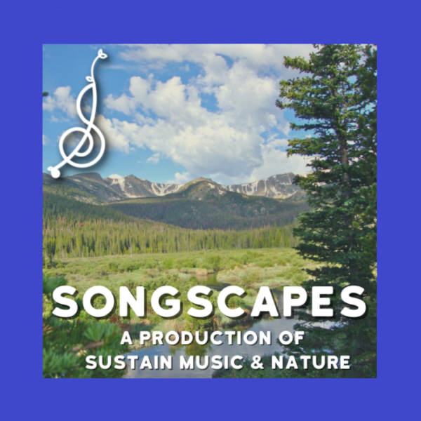 Songscapes